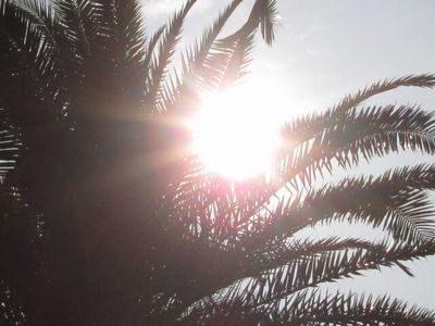 夏至 スピリチュアル 体調不良 【2020年】夏至とスピリチュアル!太陽のパワーで人生を変えられる特...